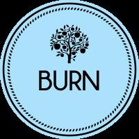 menu-types-burn